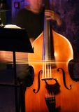 Contrabass Royalty Free Stock Image