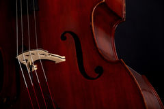 Contrabass Stock Photo