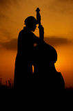 Contrabass Stock Photos