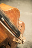 Contrabass on classical concert Stock Image
