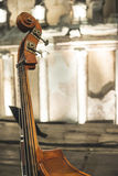 Contrabass on classical concert Royalty Free Stock Photo