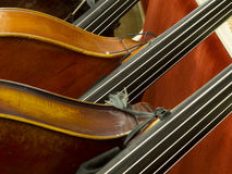 Contrabass closeup Stock Photo