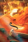 Contrabass at concert stock photography