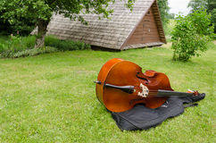 Contrabass musical instrument on summer grass Royalty Free Stock Photos