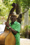 Contrabass Royalty Free Stock Photography