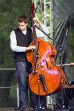 Contrabass player Royalty Free Stock Photos