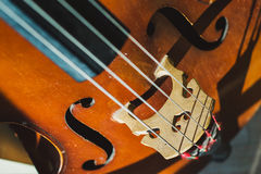 Contrabass strings Stock Photography