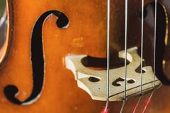Contrabass strings Royalty Free Stock Photo