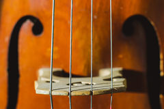 Contrabass strings Royalty Free Stock Image