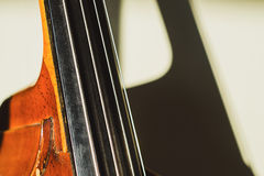 Contrabass strings Stock Images