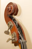 Contrabass wooden instrument details Royalty Free Stock Photos