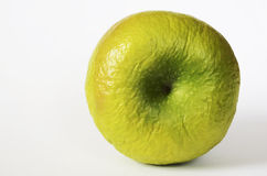 Contracted green dry apple Stock Images
