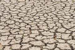 Contraction and desiccation cracks in dry earth. Because of the lack of water in the soil Stock Image