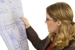 Contractor. Female contractor looking at blueprints isolated on white Royalty Free Stock Image