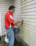 Contractor Cleaning Algae And Mold From Vinyl Siding Stock Image