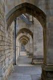 Contrafforti del Nave della cattedrale della Winchester fotografia stock libera da diritti