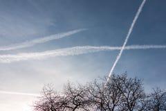 Contrails i den blåa himlen arkivfoto