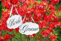 Contrassegno di nozze e fiore della molla Fotografia Stock