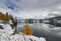 Contrast autumn winter alpine lake Royalty Free Stock Photos