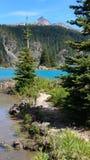 Contrast. Ing colors at garibaldi lake Royalty Free Stock Image