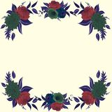Contrast frame with flower compositions Royalty Free Stock Images