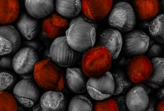Contrast highlight special bright red nut hazelnut on the background toning many fruits mix base design stock photography