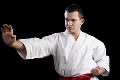 Contrast karate young fighter on black. High Contrast karate male fighter on black background Stock Photo