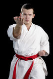 Contrast karate young fighter on black Stock Image