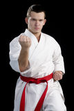 Contrast karate young fighter on black Stock Images