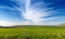 Contrast landscape in the fields Stock Photography