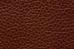 Contrast leather texture in perfective brown colour. High resolution photo Stock Image