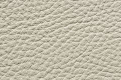 Contrast uneven leather texture in light colour. High resolution photo stock photo