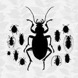 Contrast vector set with silhouette of bugs. Drawing of beetles. Insect on the background with gray leaves. Cartoon bug illustration Stock Photo