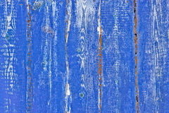 Contrast Wood  blue grunge texture Royalty Free Stock Image