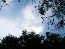 Contraste brillante del cielo fotografía de archivo