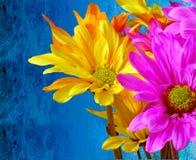 Contraste - chuva ou brilho Fotografia de Stock