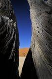 Contraste dans le désert Photographie stock