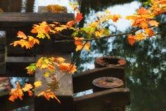 Contraste de las hojas de otoño con las ayudas de madera del puente foto de archivo