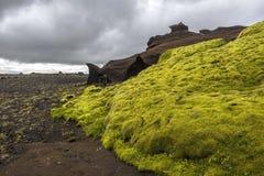 Contraste que sorprende del musgo verde y de las formaciones marrones de la piedra arenisca a lo largo del camino de Kerlingardal fotos de archivo