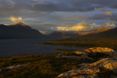 contrasted highlands στοκ φωτογραφίες