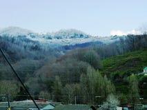 Contrastes del invierno de la naturaleza Foto de archivo libre de regalías