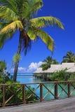 Contrastes verts et bleus de Polynésie Photographie stock libre de droits