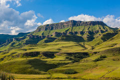 Contrasti scenici di estate verde blu della montagna Immagine Stock
