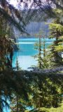 Contrasting Colors at Garibaldi Lake. The shadows of the forest really emphasize the bright turquoise of the glacial lake Royalty Free Stock Photography