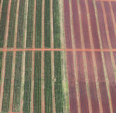 Contrasting Fields. Aerial Image of fertile crops beside a field waiting to be planted. Intersected by a dirt road royalty free stock photos