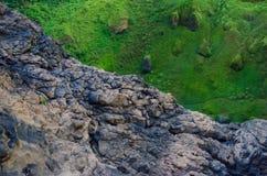 Contrasto radicale fra muschio ed erba verde e scogliera marrone della roccia in profondità in foresta pluviale del Camerun, Afri Fotografia Stock