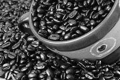 Contrasty cup of coffee beans. Black and White Coffee Beans Vintage Cup Royalty Free Stock Images