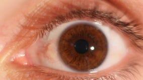 Contratación del iris del ojo humano Ascendente cercano del extremo metrajes