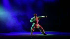Contratan al hombre a karate - realiza obdurations contra la perspectiva de humo coloreado almacen de metraje de vídeo
