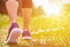 Contratan a la muchacha a funcionamientos cardiios a través del bosque en zapatillas de deporte, sólo las piernas son visibles, l Imagenes de archivo